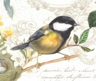 Vogeltjes Porselein