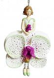 Orchidee meisje hangend 12cm lila groen