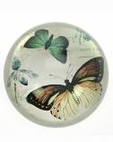 Presse paper met Vlinder 10 cm