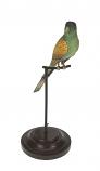 Papegaai op stok 33cm